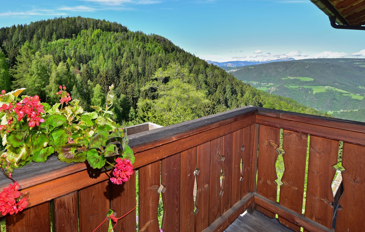 Are you looking for apartments in Ritten? At the Waldnerhof you will be welcome!