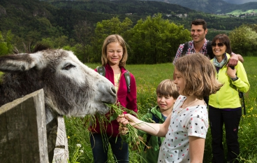 Farm holiday with children South Tyrol 01